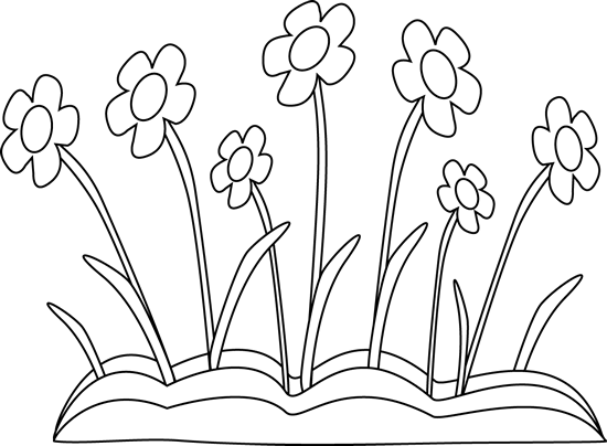 Black and White Spring Flower Patch