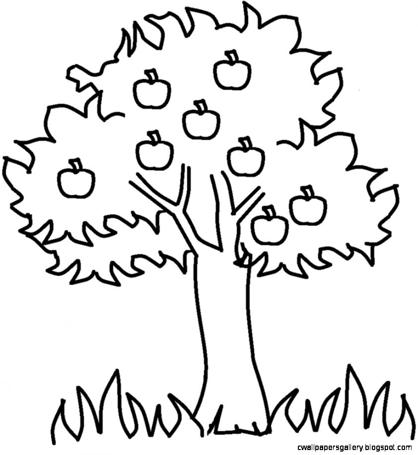 Black And White Tree Outline Wallpapers Gallery