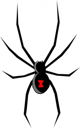 Black Widow Clipart #1