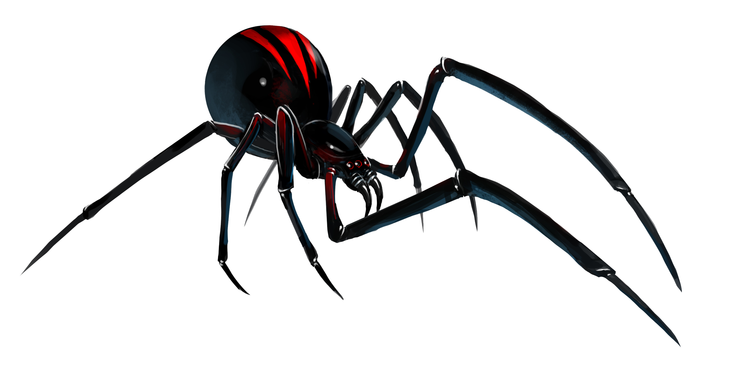 Black Widow clipart transparent #7