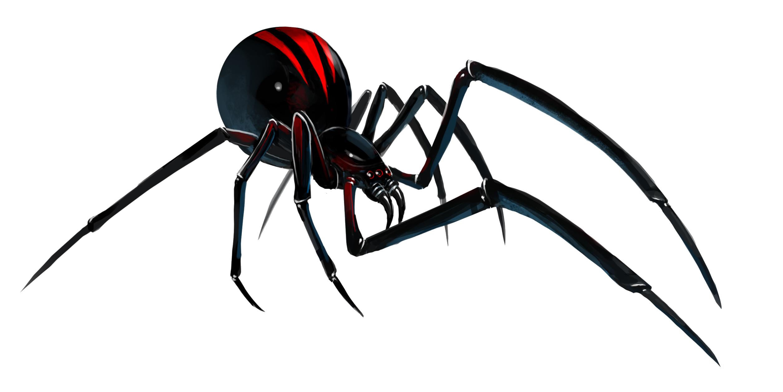 Black Widow clipart transparent #7