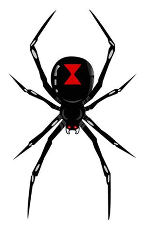 black widow spider logo clipart