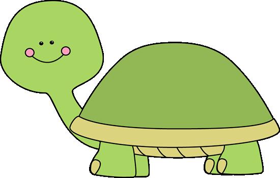 Blank Turtle