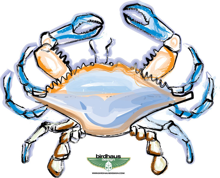 Blue Crab Clip Art. blue crab drawing