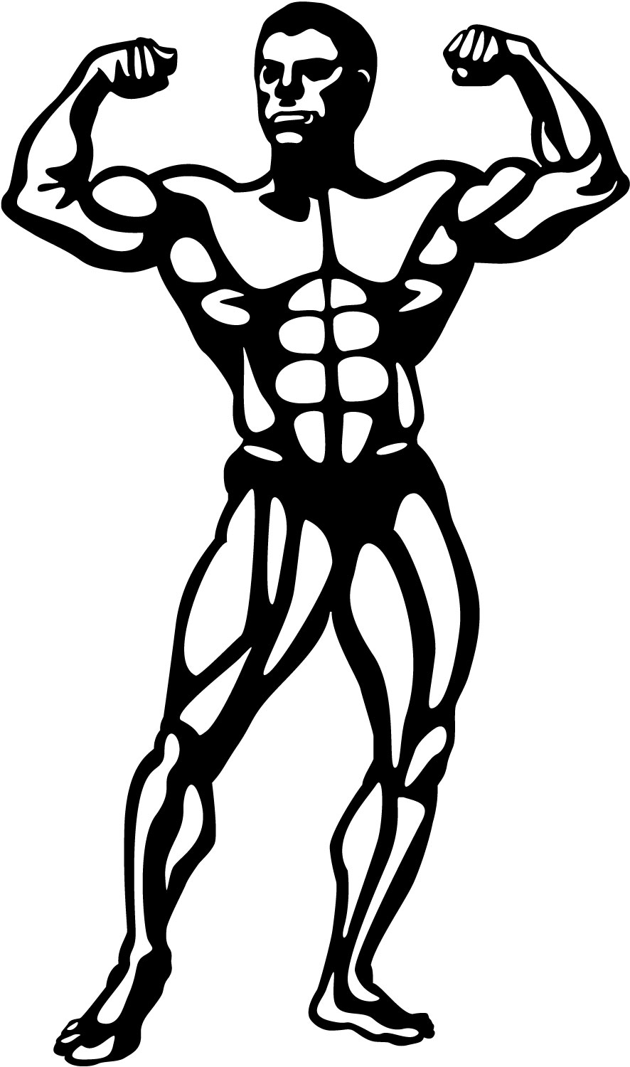 Art Clip Bodybuilding Clipart Free Download On