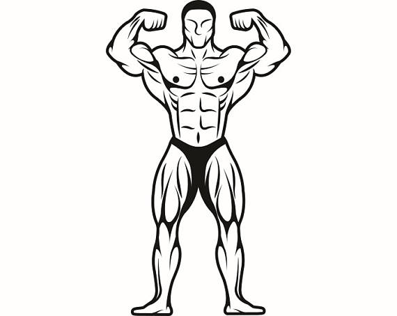 Bodybuilder #14 Bodybuilding Logo Front Pose Weightlifting Fitness Workout  Gym Weight Muscle.SVG .EPS .PNG Clipart Vector Cricut Cut Cutting