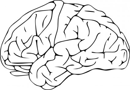 Brain clip art free vector in open office drawing svg svg