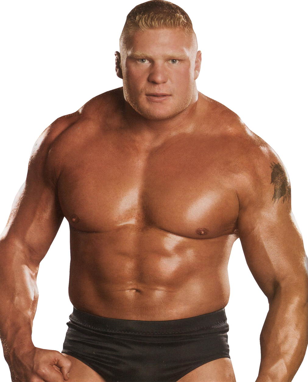 Brock Lesnar Clipart PNG Image