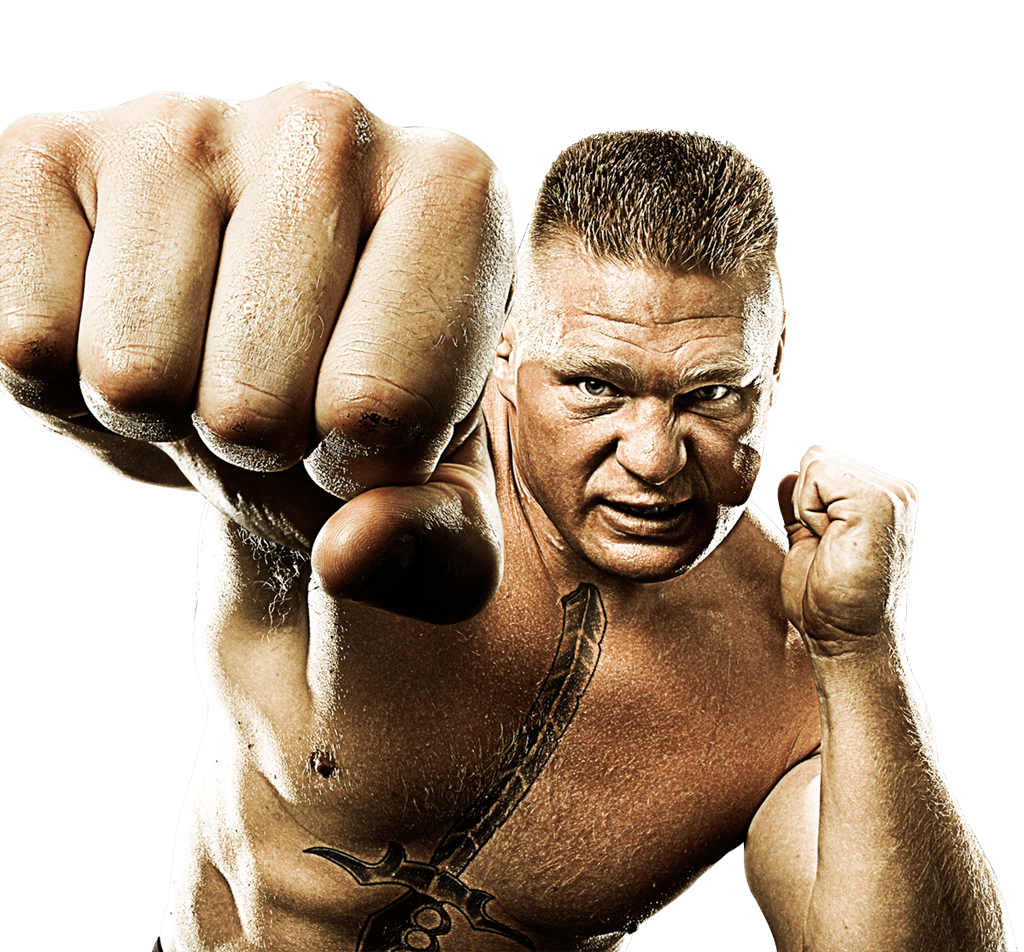 Brock Lesnar Punch