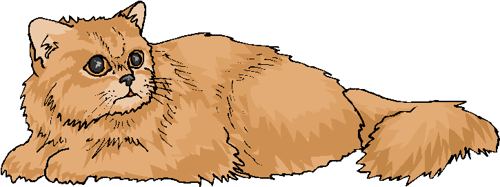 Brown Cat Sit On The Ground Free Clipart