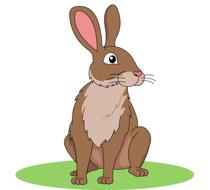 Brown Rabbit Clipart Size: 91 - Rabbit Clip Art