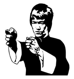 Bruce Lee v2 Decal Sticker