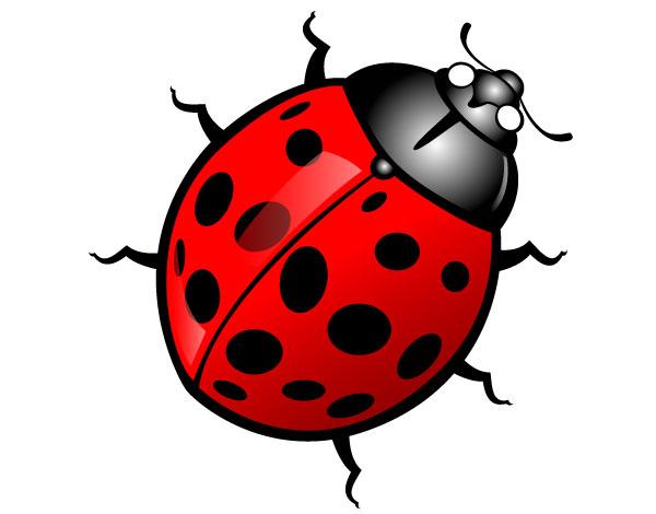 Bug Clip Art Free