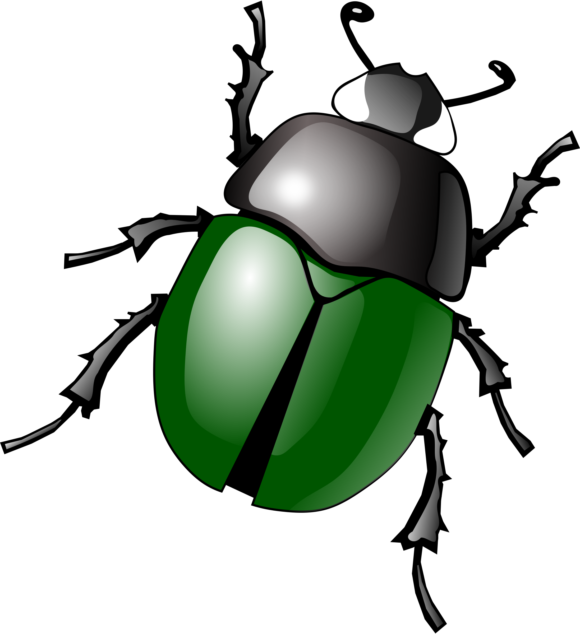 Bugs image free pictures bug clip art image