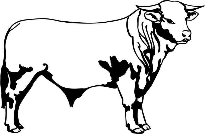 Bull clipart black and white #2