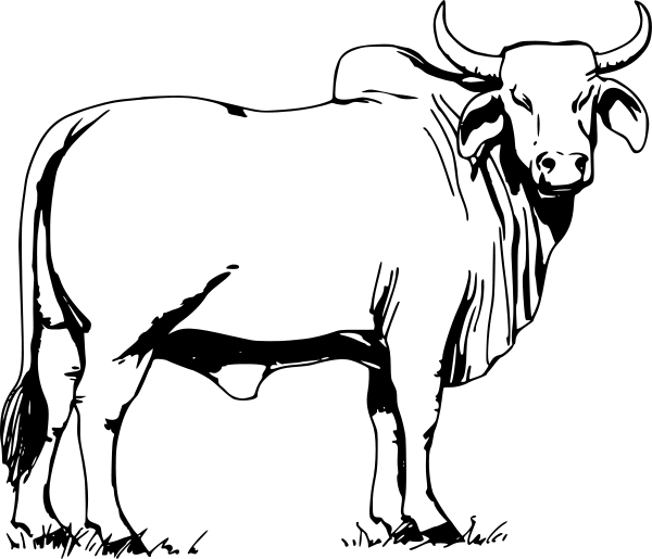 New Bull Clipart 85 On Plant Clipart with Bull Clipart