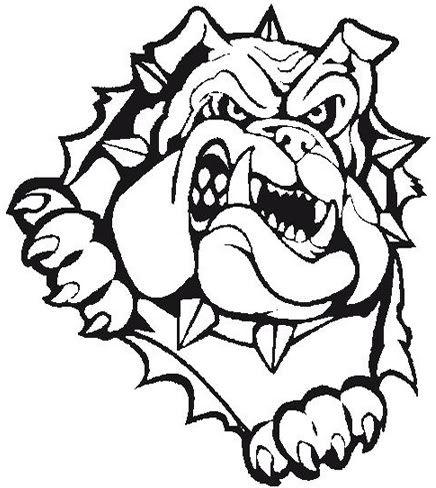 Bulldog Baseball Bulldog Clipart, Bulldog Images, Bulldogs Football, Team  Shirts, School Shirts