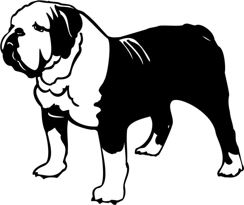 Bulldog clipart clipartion com 2