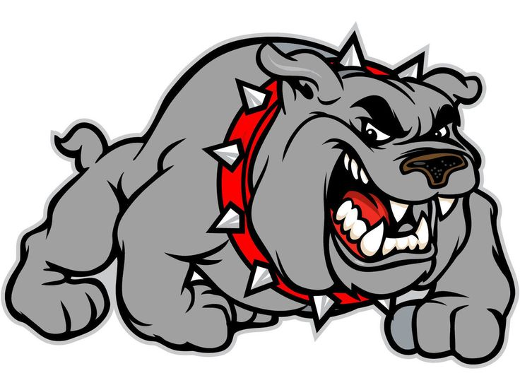 Bulldog Clipart Free - Viewing Gallery