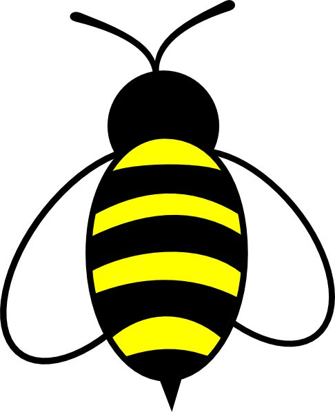 Bee clipart ideas only on bumble bee images 3
