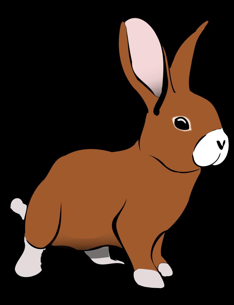 Bunny Clip Art - Rabbit Clip Art