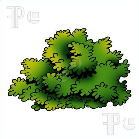 Bushes Clipart-hdclipartall.com-Clip Art449