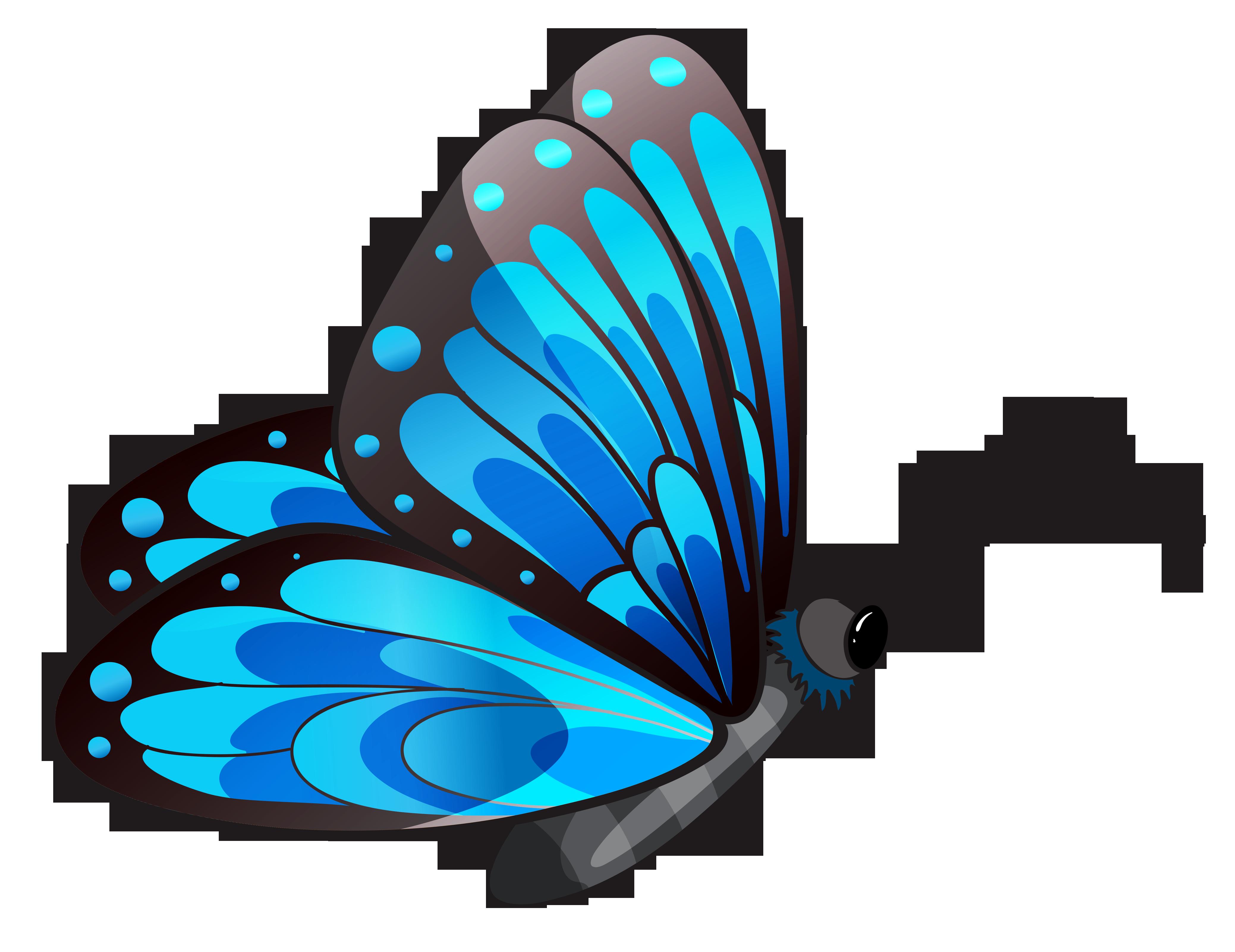 butterflies clipart 1. butterflies clipart. butterflies clipart. b5ebadb7b4a0e8eea0354286ad8e56 .