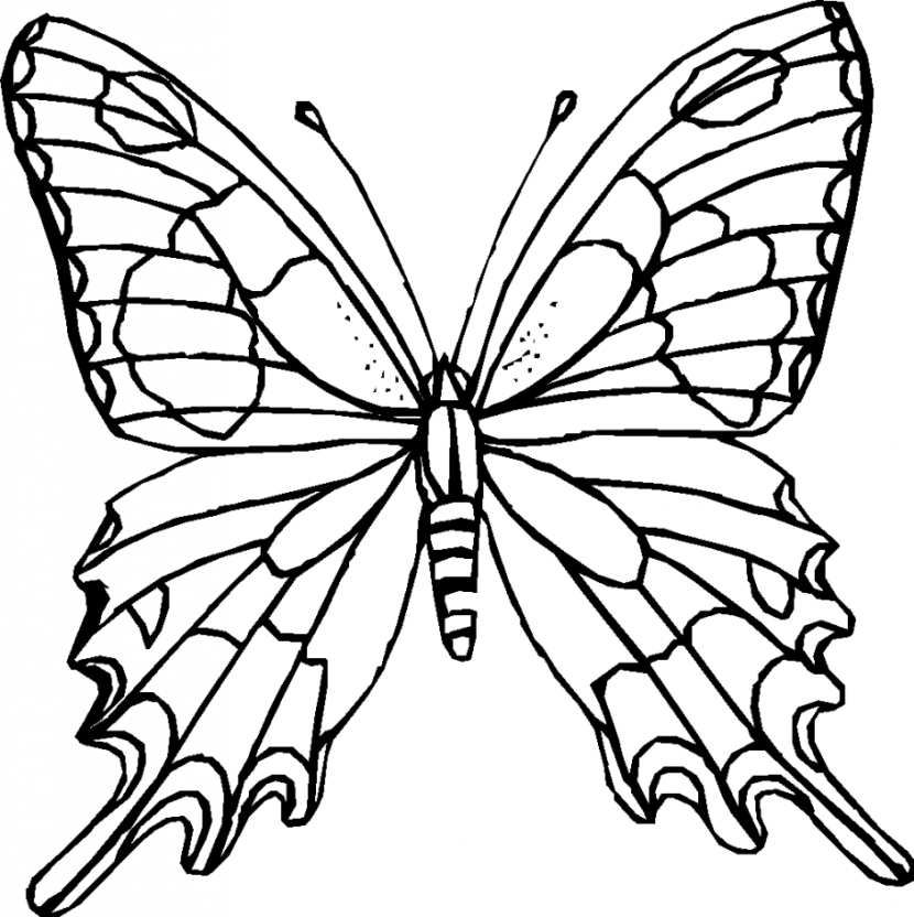 Butterfly black and white butterfly clipart black and white 4