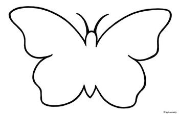 Butterfly: Black White .