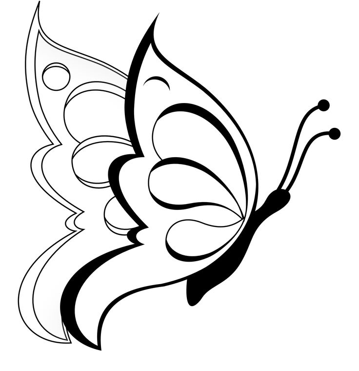 Butterfly Clipart Black And White #15173