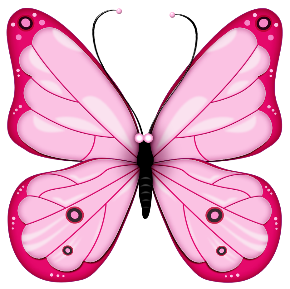 Butterfly clipart free images 2
