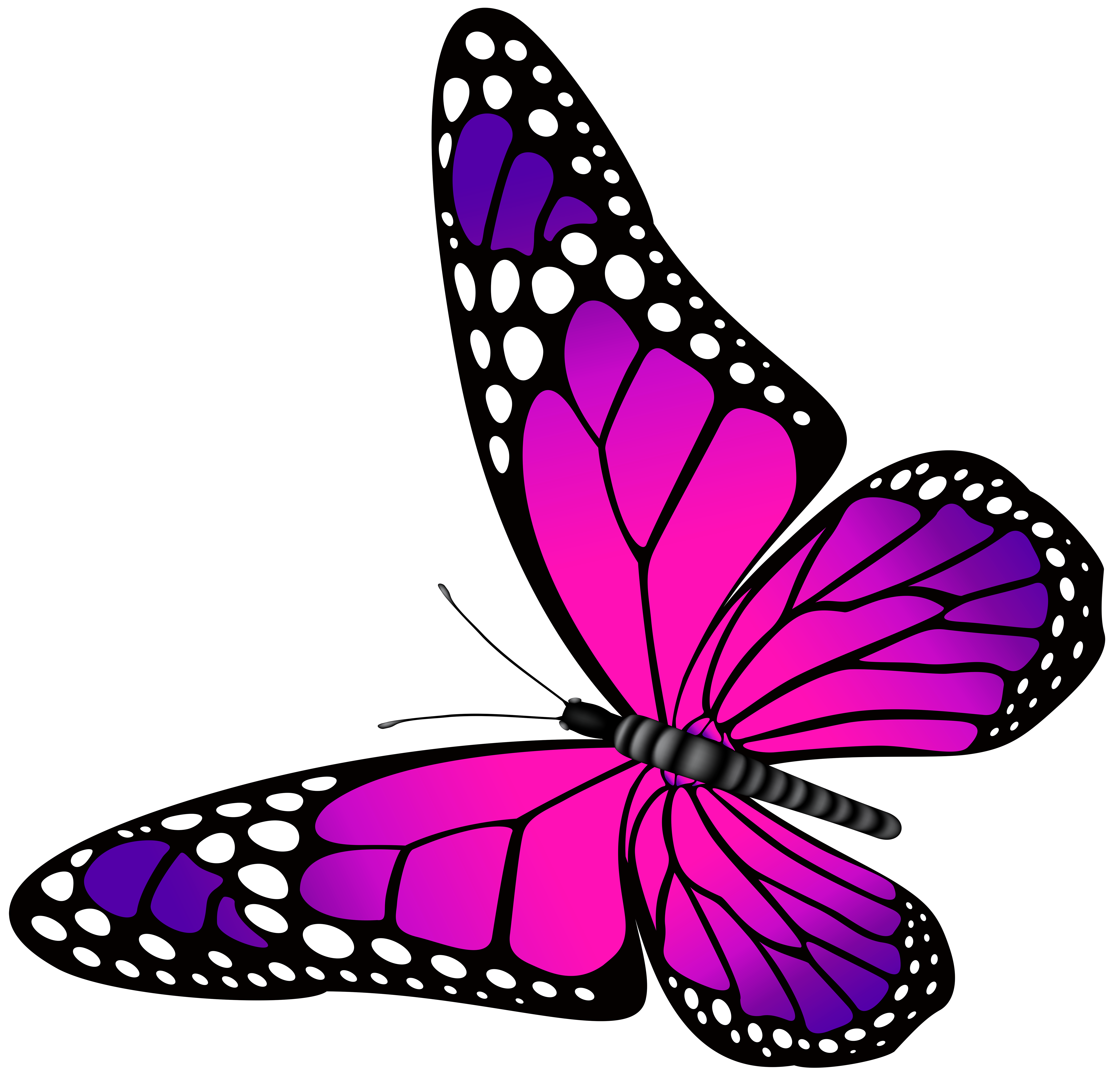 Pink Butterflies Clipart Butterfly And Purple Transparent PNG Clip Art Image