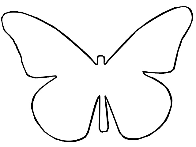 Butterfly outline butterflies and on