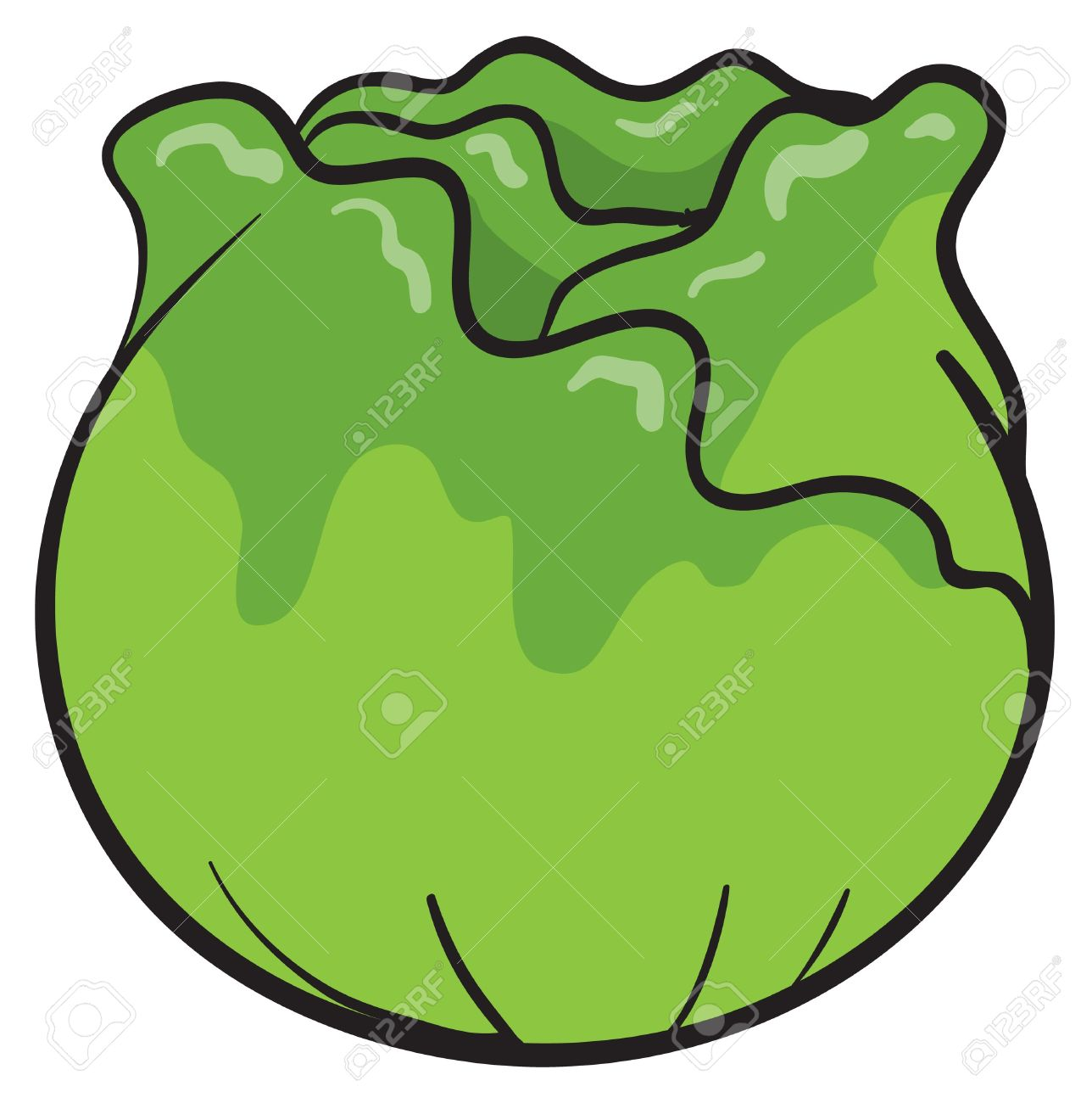 Cabbage clipart animated #4