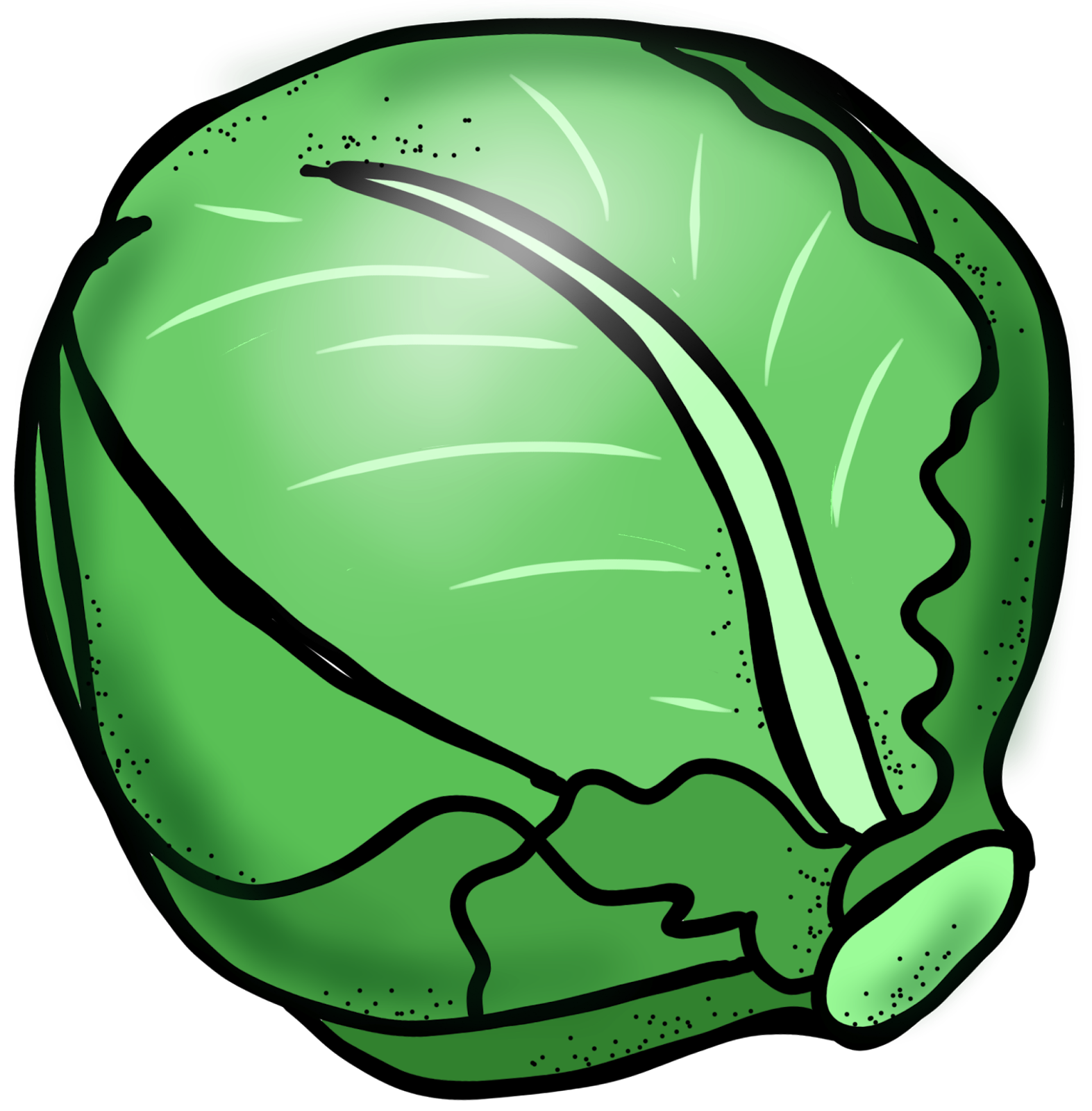 Clip Art - cute cabbage veget