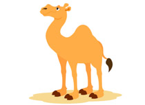 Free Camel Clipart