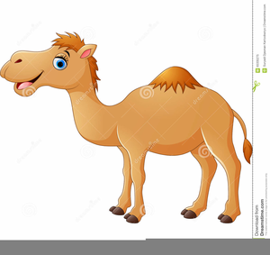 Funny Camel Clipart Image
