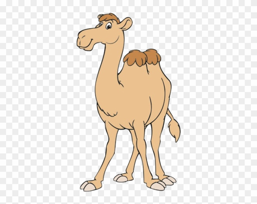 Funny Camel Clipart Pictures - Camel Cartoon #307862