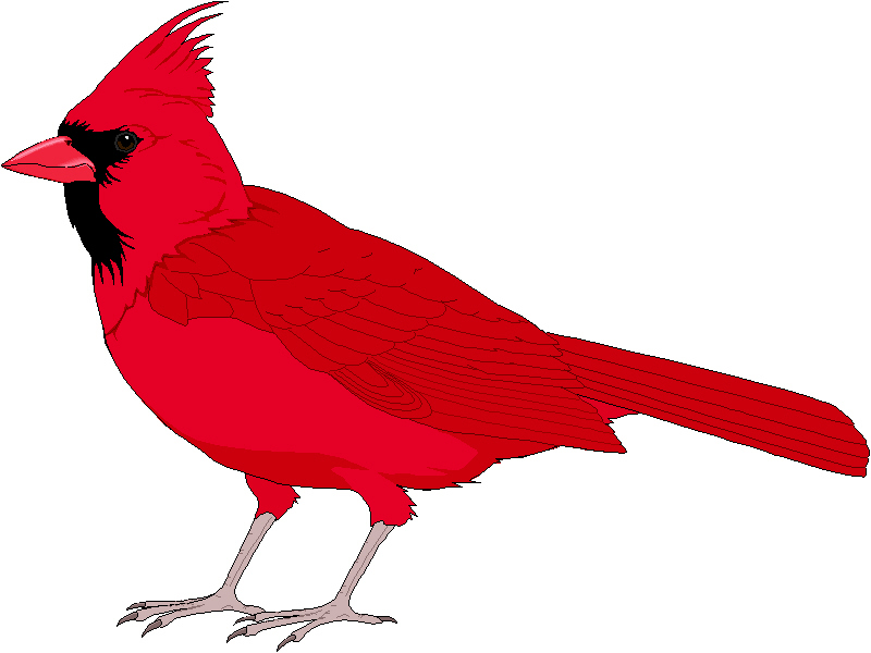 Cardinal Clip Art Clipart Best