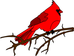 Cardinal Clipart Image .
