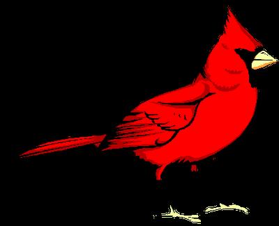 ... Cardinal Clipart - clipartall ...