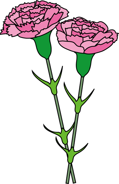 Carnation cliparts