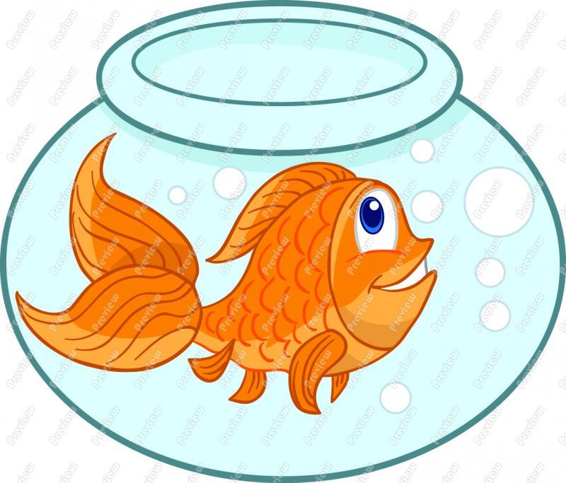 Cartoon Goldfish Clip Art Gold .