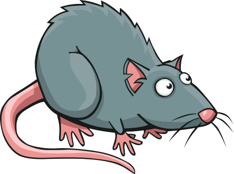Cartoon Rat vector art illustration