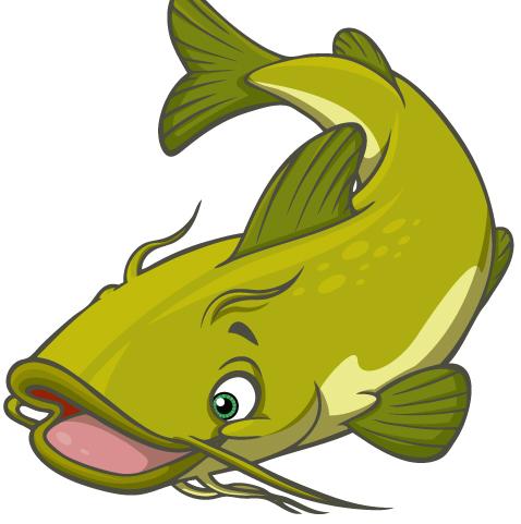 Catfish Clipart Cliparts Co
