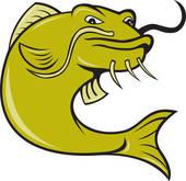 Catfish Illustrations And Clip Art 50 Catfish Royalty Free