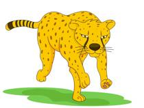 cheetah clipart. Size: 62 Kb