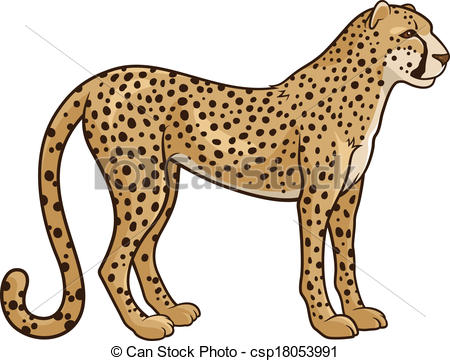 Cheetah - csp18053991
