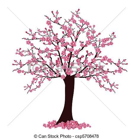 ... cherry tree - vector illustration of many cherry blosoms on... ...