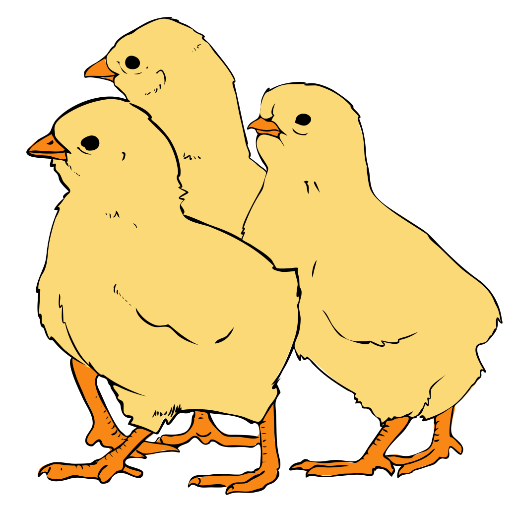 File:Chicks clipart 01.svg